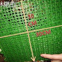 30*30公分組合式人造草 拼裝草 DIY組合 塑膠草 假草 短草 人工草皮 排水墊 止滑墊