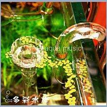 台北►►多彩水族◄◄套組《玻璃 油膜處理+百合型出水管.12/16 mm》高透玻璃_出入_進出_水管 出 進 水管