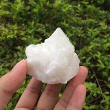 【小川堂】淨化 巴西 原礦(24) 正能量 純天然 清料 白水晶簇 鱷魚 骨幹 水晶 131g 附木座