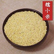 糯小米 黃小米 黏性佳 中國小米 可製小米粥小米粽小米QQ蛋點心糕點 五穀雜糧 600克 【全健健康生活館】