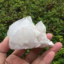 【小川堂】淨化 巴西 原礦(37) 正能量 純天然 清料 白水晶簇 鱷魚 骨幹 水晶 158g 附木座