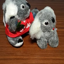 澳洲無尾熊 絨毛娃娃(尤加利葉)