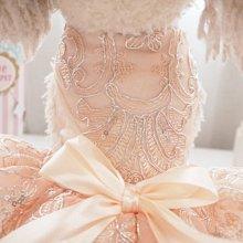 立體花邊禮服 寵物公主裝秋冬季兔子貓咪泰迪比熊吉娃娃服裝裙子洋裝
