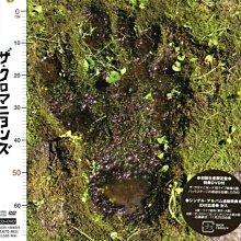 (甲上) The Cro-magnons - ザ・ク - 初回限定盤 CD+DVD
