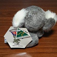 澳洲無尾熊 絨毛娃娃