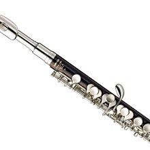 【六絃樂器】全新 Yamaha YPC-32 膠管短笛