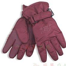 【Snow Travel】AR-36 雪之旅 3M-TC防水超薄手套 (防雨手套/保暖手套/騎士手套)