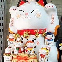 日本超大招財貓 新年擺設 開幕禮品 巨型大招財貓 日本道樂堂 高60公分 大型家居擺設 各大百貨皆有售