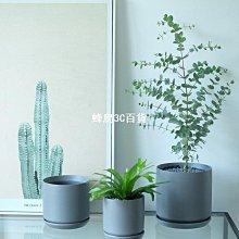 BG北歐極簡陶瓷現代啞光灰色圓柱家居桌面綠植花盆帶底托龜背-蜂鳥3C百貨