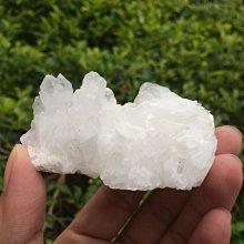 【小川堂】淨化 巴西 原礦(45) 正能量 純天然 清料 白水晶簇 鱷魚 骨幹 水晶 98.5g 附木座