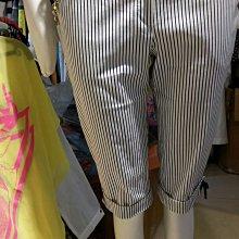 設計師造型褲
