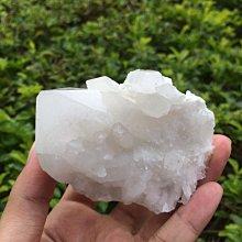 【小川堂】淨化 巴西 原礦(33) 正能量 純天然 清料 白水晶簇 鱷魚 骨幹 水晶 180.2g 附木座