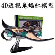 益智城《4D魟魚模型/動物模型/教學模型//DIY模型/魚模型/4D魚解剖模型/4D Master 》4D透視鬼蝠魟模型