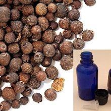 牙買加 多香果精油 15ml / 5ml  蒸餾萃取 質純未稀釋 非台灣混油分裝  原裝