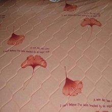 ☆高雄~專業睡眠館☆租屋族實用型全新硬式護背彈簧床墊 單人3尺~國際雙ISO品質認證(市價3成)