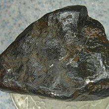 金牛礦晶.幸運寶石-51#.天鐵Iron Meteorite開運鎳鐵隕石vqq-1