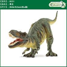 【W先生】CollectA 1:40 1/40 劍龍 暴龍 三角龍 鐮刀龍 仿真 擬真 侏儸紀 迅猛龍 恐龍模型