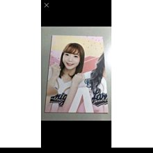 球員卡【艾璐】2019 中華職棒 LAMIGO 桃猿 啦啦隊 拼圖卡