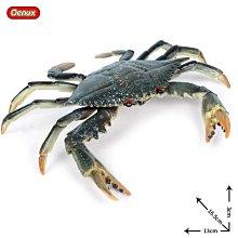 兒童仿真海洋生物野生動物玩具 大號梭子蟹 螃蟹 花蟹大閘蟹模型 柚子百貨