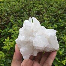 【小川堂】淨化 巴西 原礦(36) 正能量 純天然 清料 白水晶簇 鱷魚 骨幹 水晶 331.2g 附木座