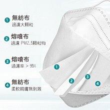 台灣出貨!4D立體防護 薄型口罩 韓版10入裝 魚形 魚型口罩 3D立體口罩 成人口罩 KF94口罩 4D口罩 大J襪庫