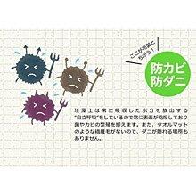 免運 日本 HIRO 珪藻土浴室防潮地墊 浴室腳踏墊 原色 天然素材 超強吸水力 速乾除臭防潮❤JP Plus+