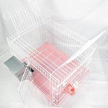 皇冠 ACEPET 愛兔套房(中)1.5尺 天窗式兔籠 天竺鼠籠 貂籠#745-A(附 塑餵食器,飲水器)每件990元