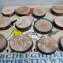 樟木圓木切片12片1標