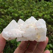 【小川堂】淨化 巴西 原礦(42) 正能量 純天然 清料 白水晶簇 鱷魚 骨幹 水晶 121.5g 附木座