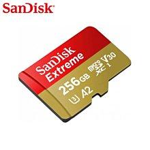 SanDisk ExtremeA2 256G microSD 記憶卡 電競級記憶卡 (SD-SQXA1-GN-256G)