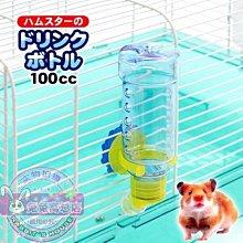 推薦 日本MiniAniman 寵物兔用飲水器 水壺 300cc 可溫水清潔