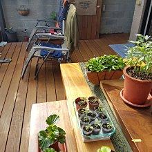 庭院。實木。防腐。南方松、木地板、原木、木作 工程