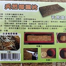 【園藝城堡】天然椰纖片(12x7cm 10片/包) 栽培介質 透氣佳 保水佳 促進根系發展  天然環保