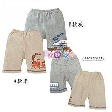❤厤庭童裝舖❤最後二組【F085】交通工具棉質短褲(80/90CM)三件一組