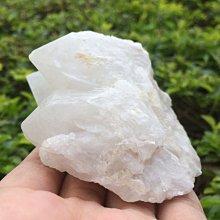 【小川堂】淨化 巴西 原礦(31) 正能量 純天然 清料 白水晶簇 鱷魚 骨幹 水晶 193.1g 附木座