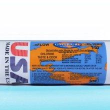 【水易購淨水】美國進口OMNIPURE - 小T33後置顆粒活性炭濾心 NSF認證