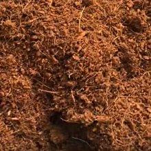 【現貨】~全館滿790免運~ 純椰纖土(大椰磚)椰土25公斤裝(約240公升)無毒培養土 種菜 有機蔬菜栽培土 僅限宅配