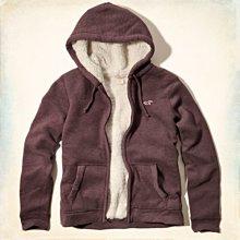 @小凸媽媽@Hollister【全新真品現貨在台S號】Seascape Sherpa-Lined海鷗男熊寶寶連帽外套