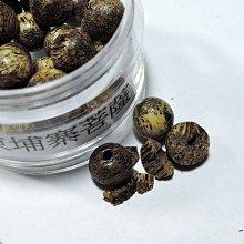 6R0沉香樣品珠.柬埔寨菩薩沉香約7mm.一粒