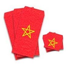 獨家特別企劃:超強能量五芒星紅包袋(9大9小入)