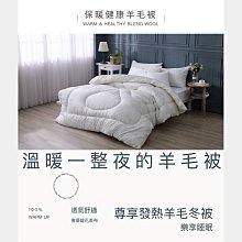 【現貨】台灣製 發熱元素健康羊毛被 雙人6x7尺 3KG 保暖被 棉被 被子 被胎 Best寢飾