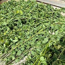 JHS((金和勝 小農))無毒有機 新鮮現割 紫花苜蓿草 天然梗葉比例 300g裝  0601