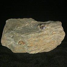 古玩軒~金沙礦含碧璽.原礦.原石.金沙礦石.碧璽原石.共生礦.BRO