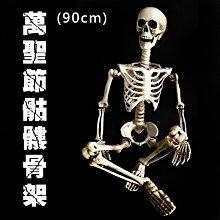 萬聖節 全身骷髏 (90cm) 造型骷髏頭 骷髏骨架 人體骷顱頭 人體模型 布置 鬼屋 整人【W44001203】塔克