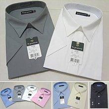 加大尺碼&一般尺碼 標準襯衫 挺直 不皺免燙 上班及正式場合皆可穿著 正式襯衫 上班襯衫 九種顏色可選擇sun-e322