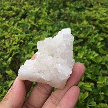 【小川堂】淨化 巴西 原礦(22) 正能量 純天然 清料 白水晶簇 鱷魚 骨幹 水晶 66.9g 附木座