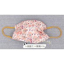 [韓娜]好特別獨賣神奇寶貝五片ㄧ組生日禮物🎁成人口罩ㄧ次性(搜尋🔍韓娜口罩)更多絕美絕版款等您來收藏現貨供應中衛生品售出不退
