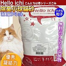 【🐱🐶培菓寵物48H出貨🐰🐹】國際貓家HelloIchi 》全新除臭配方凝結小球貓砂5L 特價79元