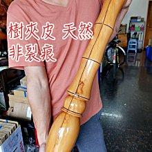 【超大隻 台灣檜木 黃檜 文昌筆 檜木文昌筆 1】大筆進財  黃檜 紅檜 檜木聚寶盆 檜木瘤 樹瘤 檜木桌 奇木