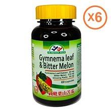 六瓶特價組 Gymnema Leaf  複方武靴葉 山苦瓜 鉻 膠囊 60粒裝X6 營養補力 美國進口